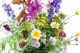 Flower Sunday Potluck is June 11