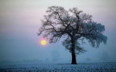 Winter Solstice Service